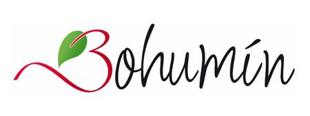 bohumin_logo_2013_02