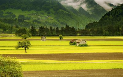 Strategie EU v oblasti biologicke rozmanitosti
